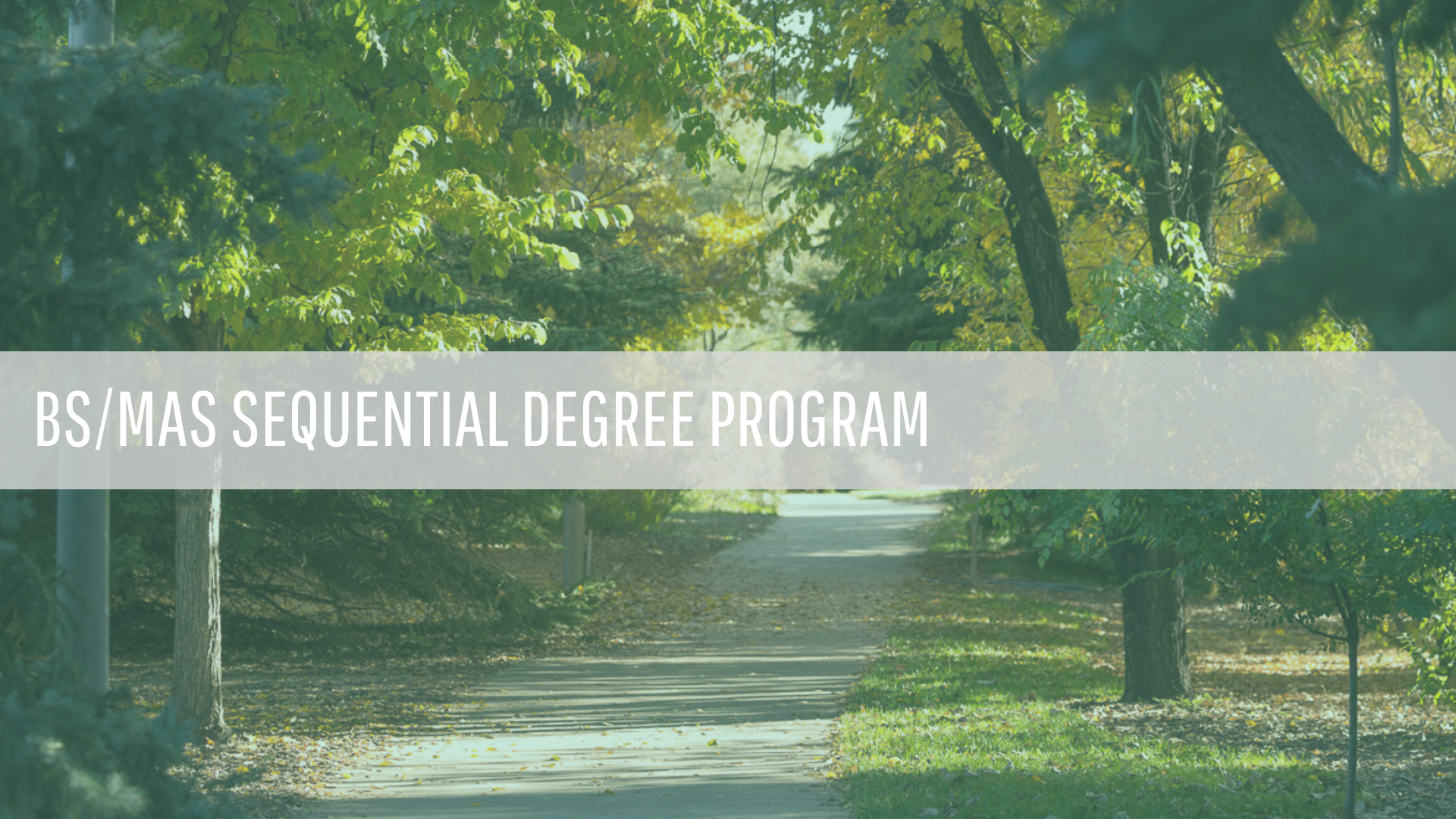 Sequential Degree Program
